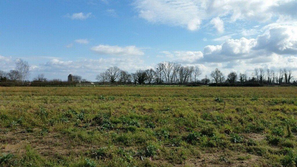 Terrain constructible à Sevrey à vendre pour votre projet de construction de maison individuelle neuve RT 2012 avec bourgogne bâtir
