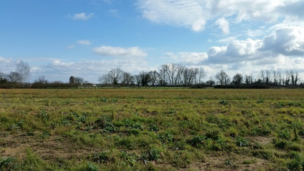 Terrain constructible sevrey bourgogne b tir for Prix moyen m2 construction neuve rt 2012