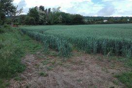 Terrain constructible à Rully à vendre pour votre projet de construction de maison individuelle neuve RT 2012 avec bourgogne bâtir