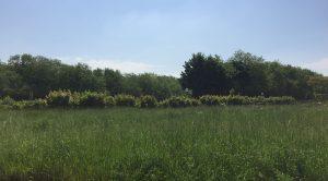 Terrain constructible à Chagny à vendre pour votre projet de construction de maison individuelle neuve RT 2012 avec bourgogne bâtir