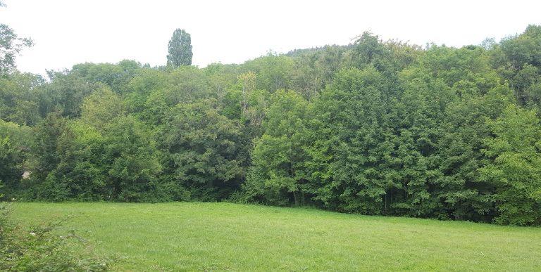 Terrain constructible vers Nolay à Cormot-Vauchignon proche Nolay