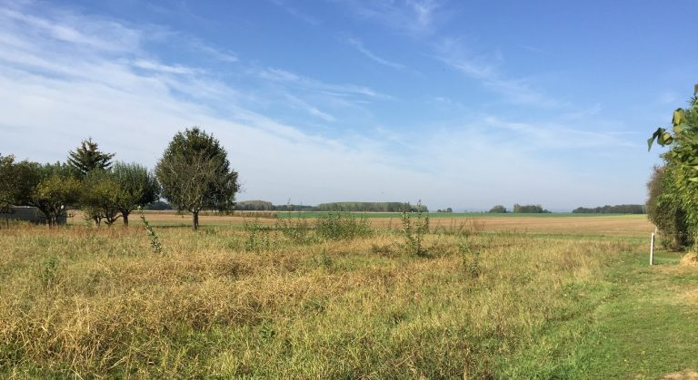 Terrain constructible avec Bourgogne Bâtir au nord de Chalon à Sassenay